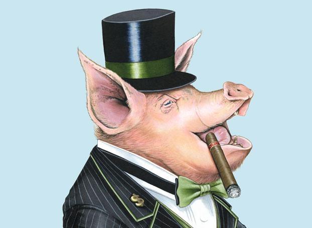 rich-pig